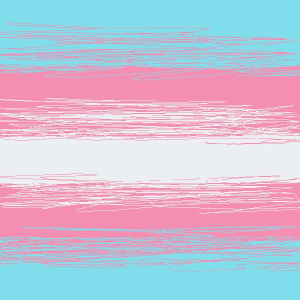 Paradigm TransFlag